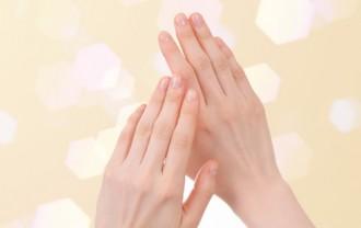 爪のはなし①~爪の構造と役割~